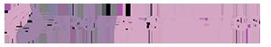 Arch Aesthetics Logo